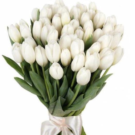25 белоснежных Тюльпанов: букеты цветов на заказ Flowwow