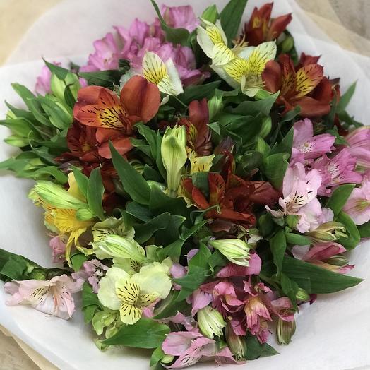 15 цветных альстромерий: букеты цветов на заказ Flowwow