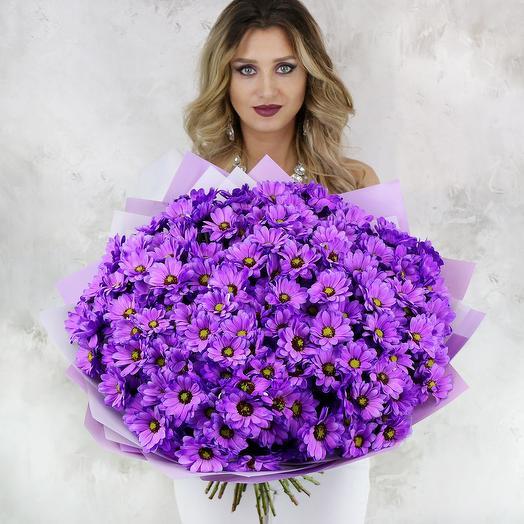 Букет из 25 сиреневых хризантем: букеты цветов на заказ Flowwow