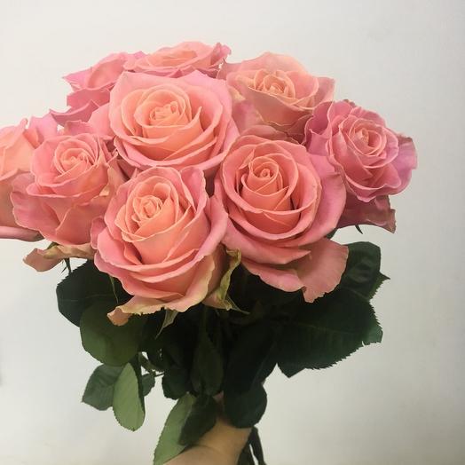 Роза Эквадор 9шт: букеты цветов на заказ Flowwow