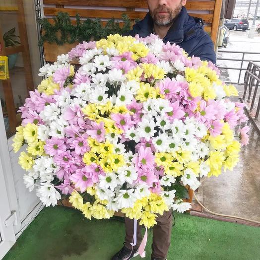41 хризантема: букеты цветов на заказ Flowwow
