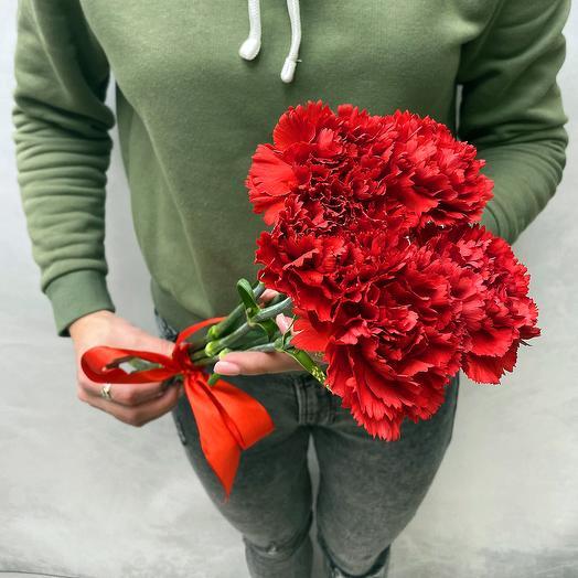 Букет 5 красных гвоздик: букеты цветов на заказ Flowwow