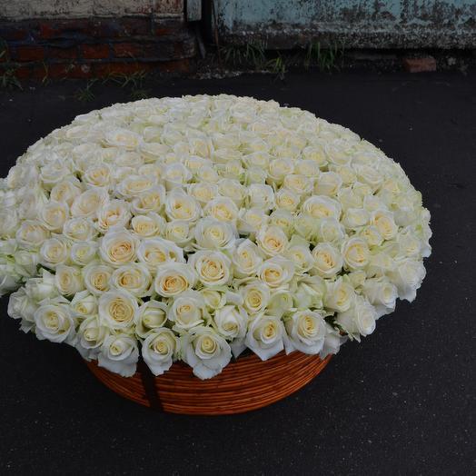 Большая корзина с розами