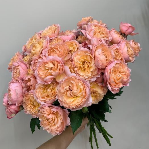 Роза кустовая пионовидная сорт Джульетта