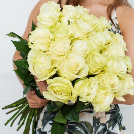 Роза белая 25шт