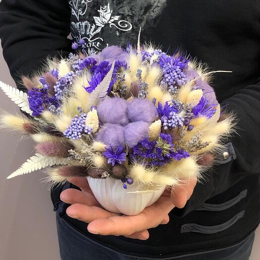 Сухоцвет лавандовый 3