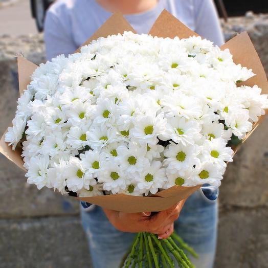 Хризантема 19: букеты цветов на заказ Flowwow