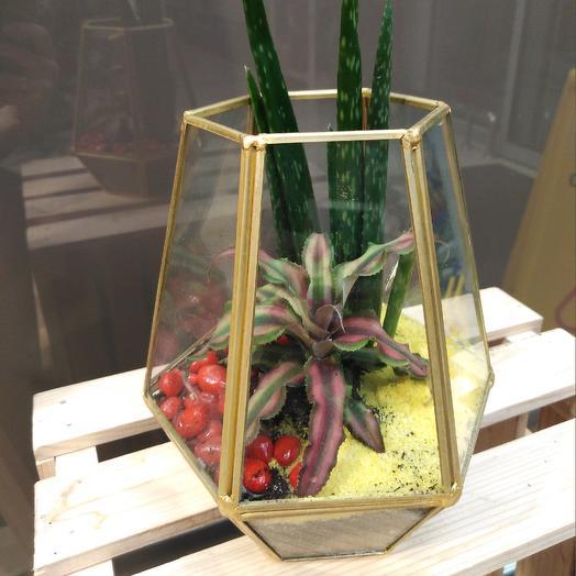 Флорариум: букеты цветов на заказ Flowwow