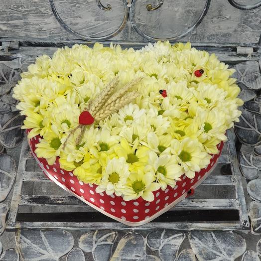 Коробочка сердце с хризантемой. Для тебя: букеты цветов на заказ Flowwow