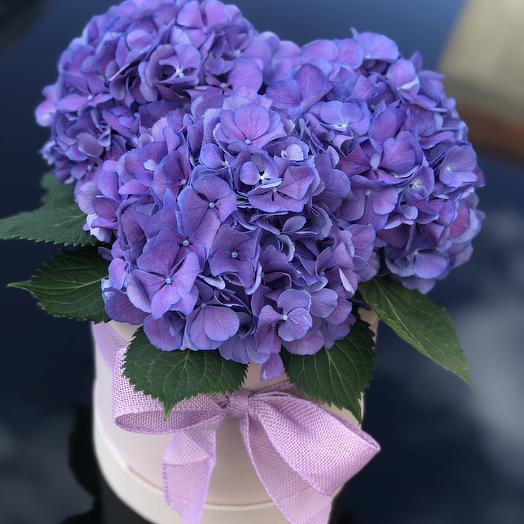 Ультрафиолетовая мечта: букеты цветов на заказ Flowwow