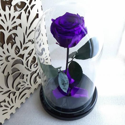 Роза из сказки