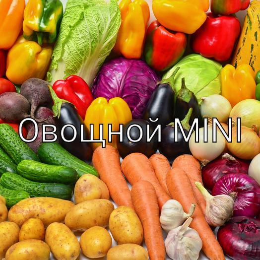 Овощной Mni