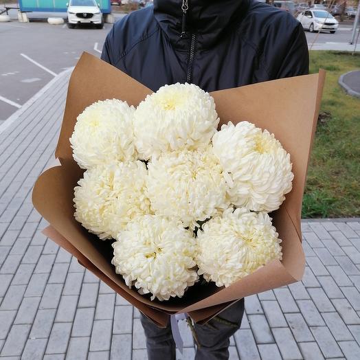 7 хризантем