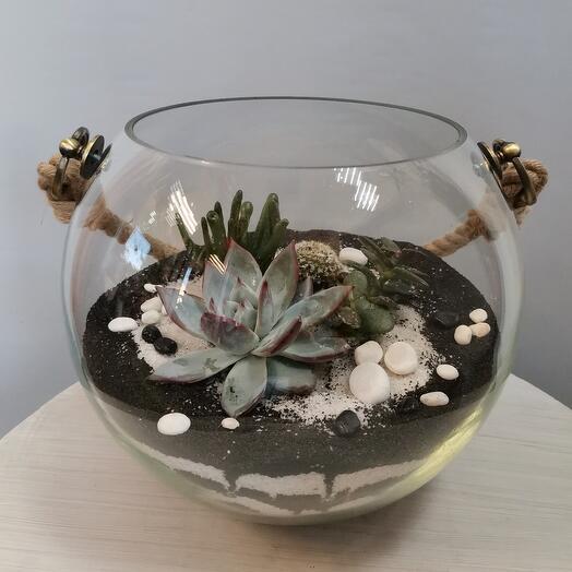 Флорариум подвесной
