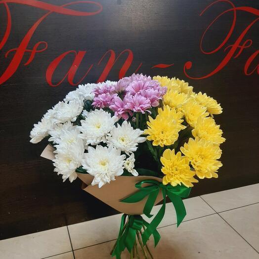 Хризантема кустовая микс 9 шт
