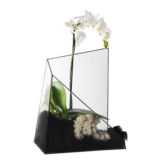 Геометрический флорариум с орхидеей ORCHID IN PAPADIMAS