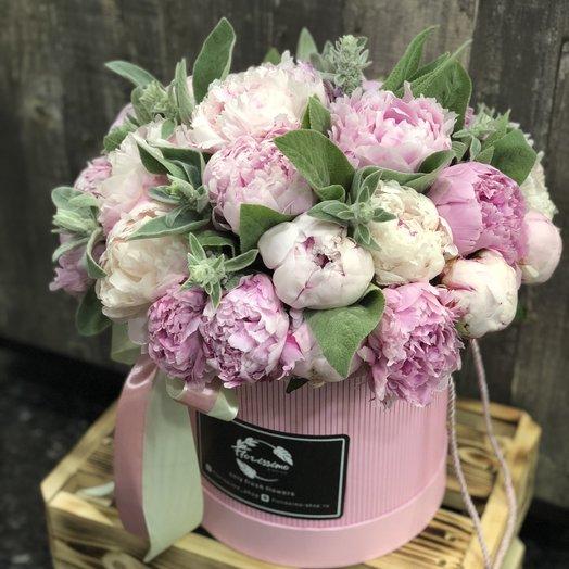 Букет пионов в шляпной коробке сорта Сара Бернар: букеты цветов на заказ Flowwow