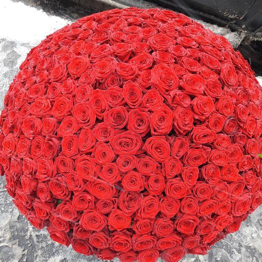 666 роза: букеты цветов на заказ Flowwow