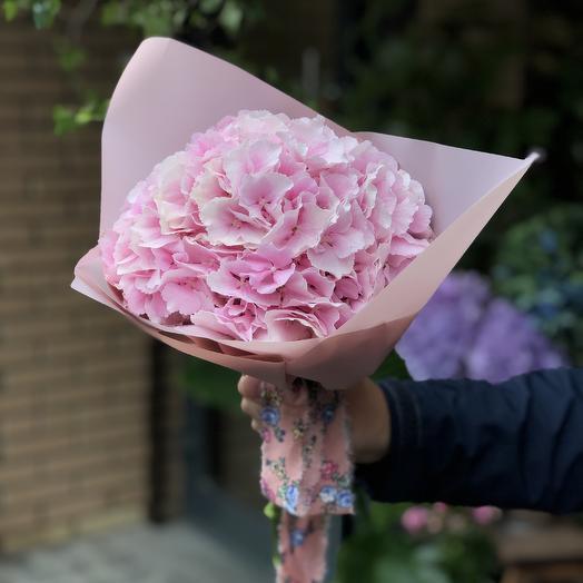Моно букет из розовой гортензии: букеты цветов на заказ Flowwow