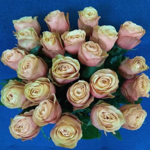 23 розы Эквадор: букеты цветов на заказ Flowwow