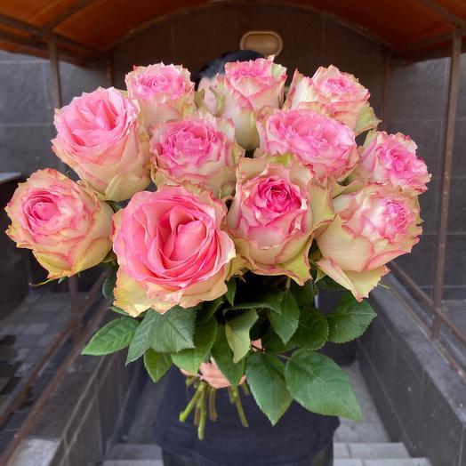 Нежнейшая Роза  11 штук 🎀