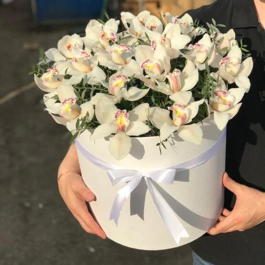 Орхидеи в большой коробке