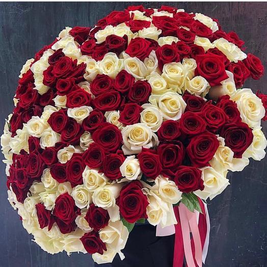 Букет из 151 бело-красной розы