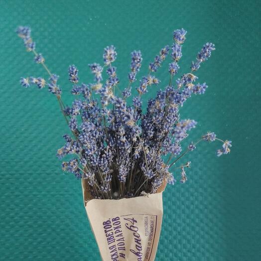 Французская лаванда в вазочке