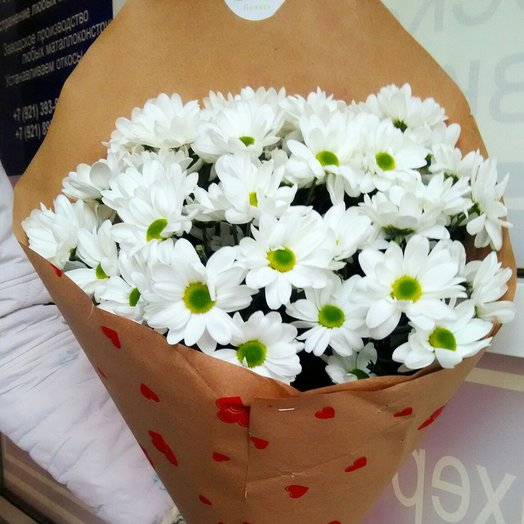 Букет из хризантем бакарди: букеты цветов на заказ Flowwow