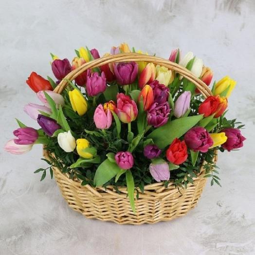 55 тюльпанов МИКС в корзине