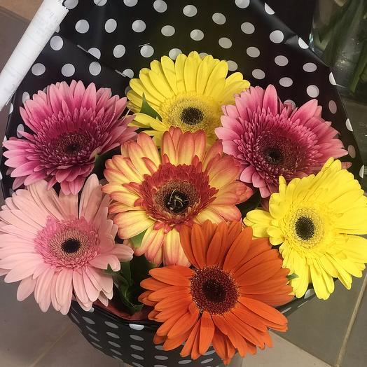 Букет с герберой: букеты цветов на заказ Flowwow