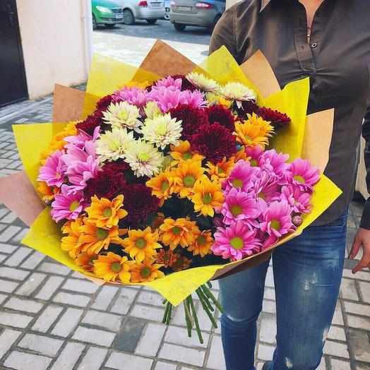 Яркий микс из хризантем