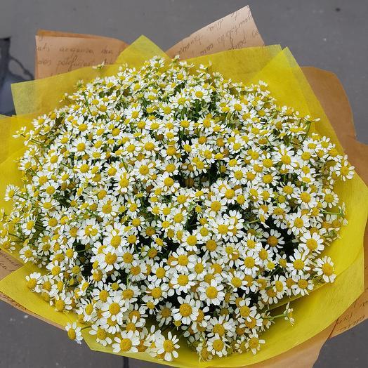 Букет из ромашек. 51 ромашка: букеты цветов на заказ Flowwow