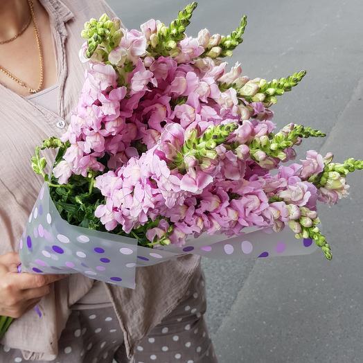Необычные цветы для вашей любимой: букеты цветов на заказ Flowwow