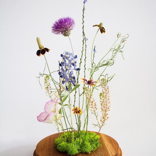 Preserved Texas Wildflower Display: flowers to order Flowwow