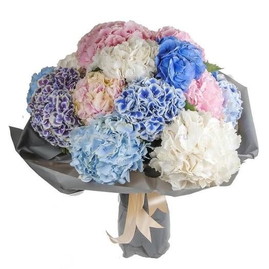 Букет разноцветных гортензий: букеты цветов на заказ Flowwow