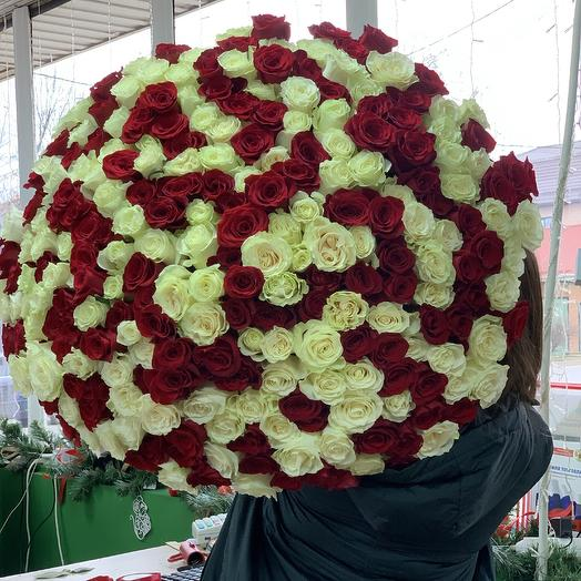 Голландская Роза - см