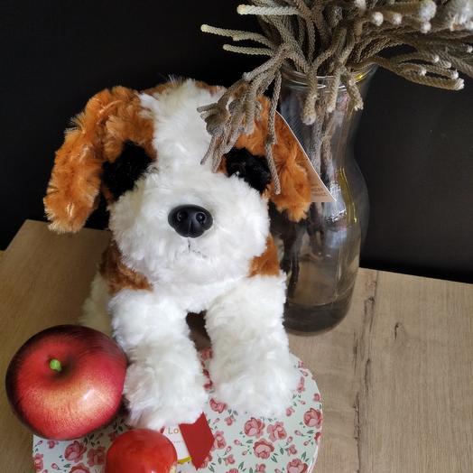 """Мягкая игрушка """"Собака"""": букеты цветов на заказ Flowwow"""