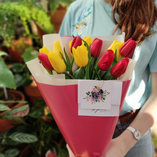 Яркие элитные тюльпаны