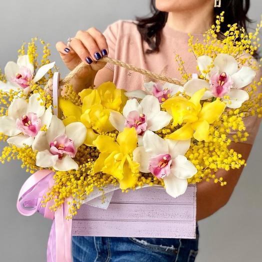 Орхидеи и мимоза