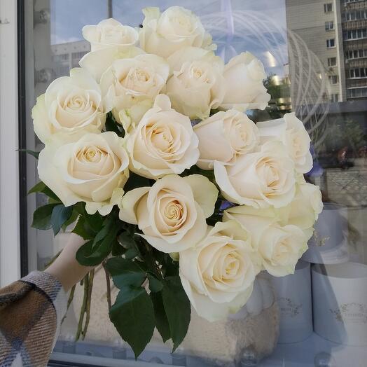 Белые розы 15штук