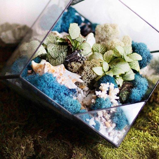 Геометрический флорариум с подсветкой LIVING OCEAN BLUE