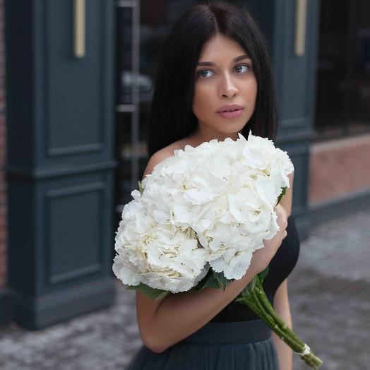 5 white Hydrangeas: flowers to order Flowwow