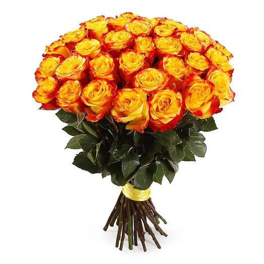 51 двухцветная роза 40 см