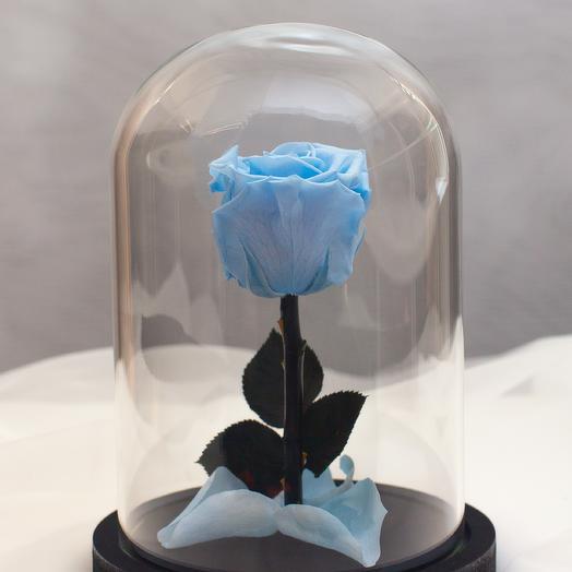 Роза в колбе RozaRose Мини Голубая