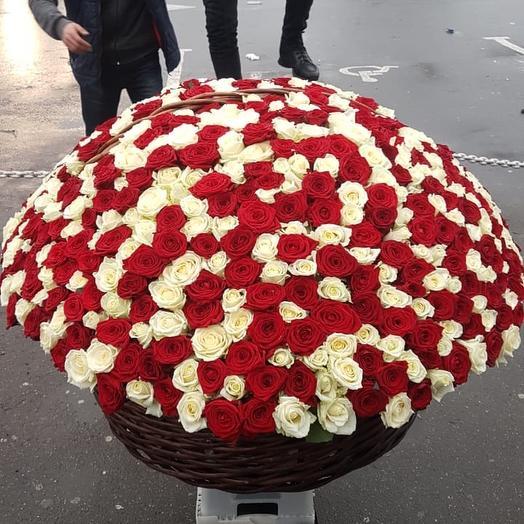 Калифорния: букеты цветов на заказ Flowwow