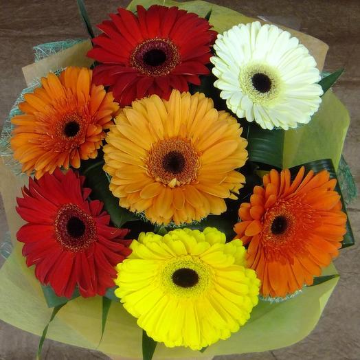 Букет из 7 гербер с зеленью: букеты цветов на заказ Flowwow