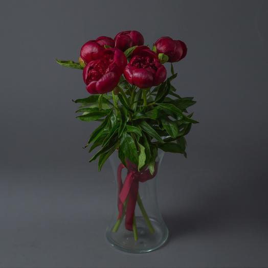 5 Красных Пионов: букеты цветов на заказ Flowwow