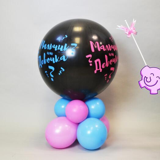 Гендерный шар Определение пола Мальчик или девочка