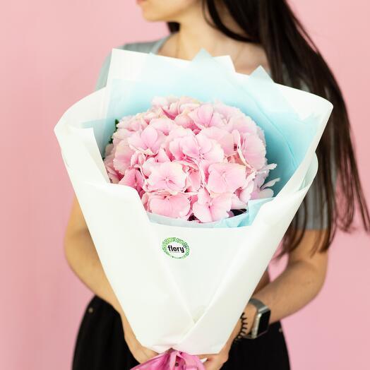 Монобукет розовой гортензии 257